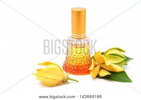 Ylang-Ylang essential oil with flowers isolated on white background.