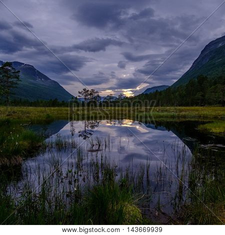 Pond in deep wild mountain forest, Innerdalen, Norway