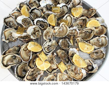 A platter of fresh raw oysters on ice with butter and lemon quarters
