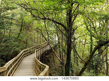 wooden bridge over Mao river canyon. Spain