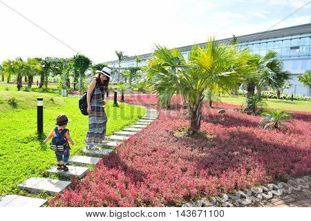 Natural beautiful plant with parent and child