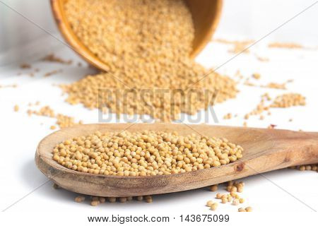 Mustard seeds into a spoon in white background