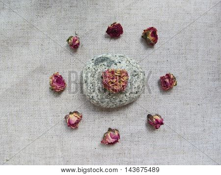 Dry rosebuds and stone on linen background