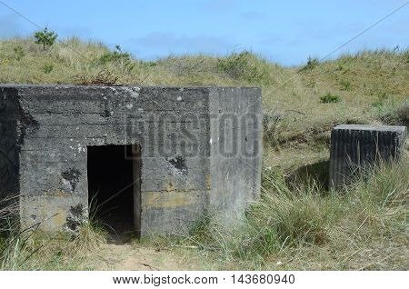 A view of an old gun battery and coastal defences at Tentsmuir forest