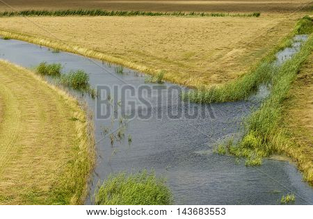 Wetlands and dry grass crossing paths in the national park the Biesboasch