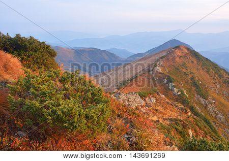 Autumn landscape with mountain ridges and peaks. Overcast morning. Carpathians, Ukraine, Europe