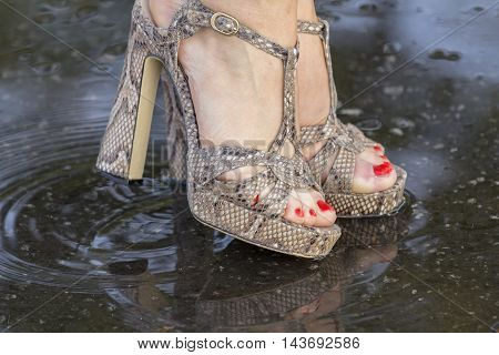 Close-up of a woman's legs in fashionable shoes, standing in a puddle summer day