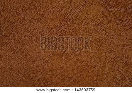 Closeup of brown leather texture and background