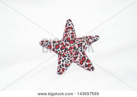 star fish on white back ground resort image