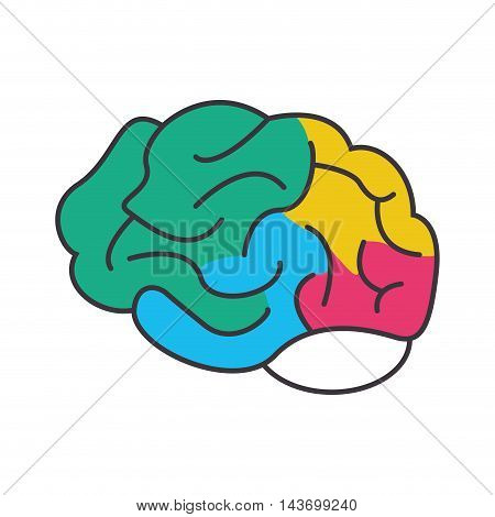 flat design colorful human head icon vector illustration