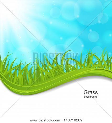 Illustration Summer Natural Postcard with Green Grass - vector