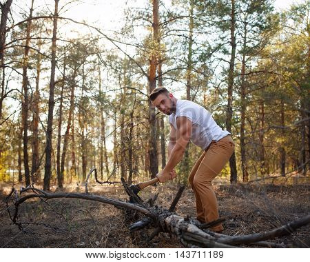 Lumberjack chopping a fallen tree with an ax. Woodcutter in a white T-shirt. Felling trees. Logging. Manual labor. Man at work.