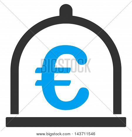 Euro Storage icon. Glyph style is bicolor flat iconic symbol with rounded angles, blue and gray colors, white background.