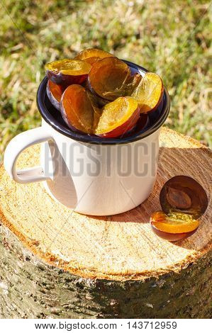 Plums In Metallic Mug On Wooden Stump In Garden On Sunny Day
