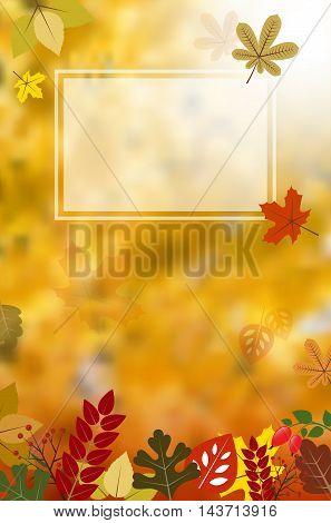 Blank Frame On Autumnal Background