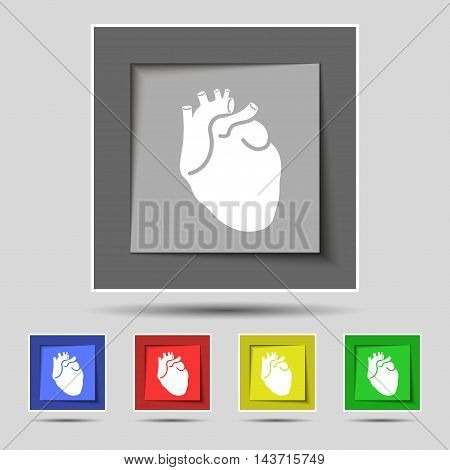 Human Heart Icon Sign On Original Five Colored Buttons. Vector