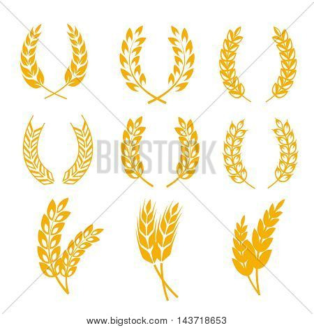 Rye wheat ears wreaths vector elements for bread and beer labels and logos. Harvest cereal golden rye illustration