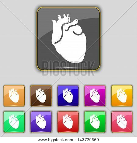 Human Heart Icon Sign. Set With Eleven Colored Buttons For Your Site. Vector