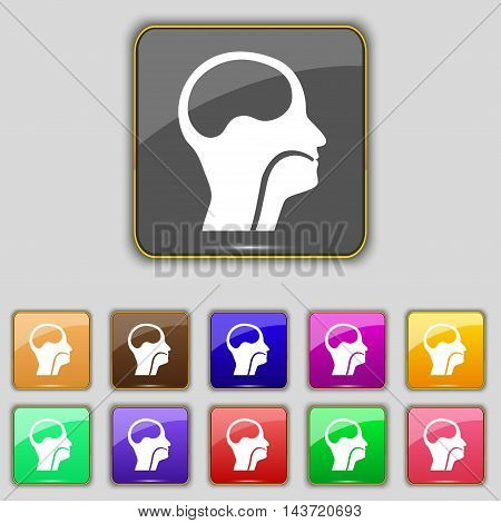 Larynx, Medical Doctors Otolaryngology Icon Sign. Set With Eleven Colored Buttons For Your Site. Vec