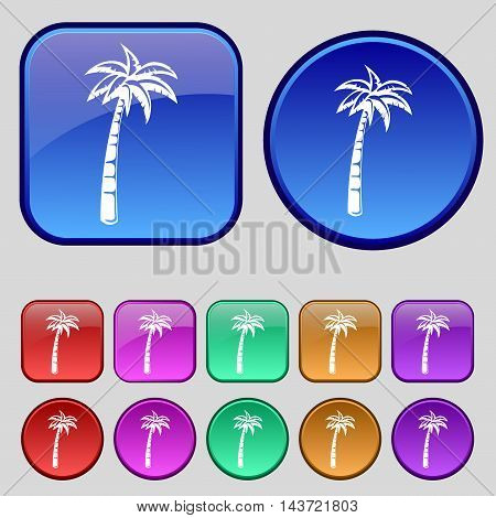 Palm Icon Sign. A Set Of Twelve Vintage Buttons For Your Design. Vector