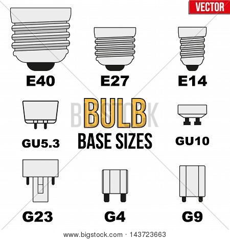 Technical infographic of typical light bulb bases. Vector Illustration isolated on white background