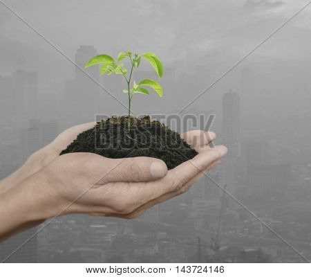 Hands holding a fresh small plant with soil over pollution city Ecology concept