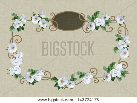 Watercolor decorative painting frame with white summer flowers