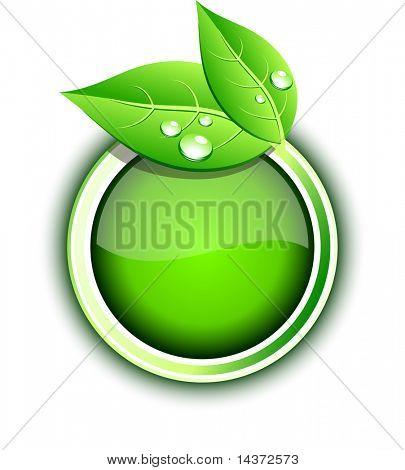 Beautiful eco icon. Vector illustration.