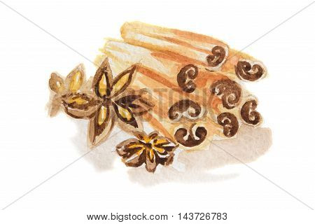 Watercolor anise and cinnamon. Isolated spice on white background. Seasoning for meal or dessert.