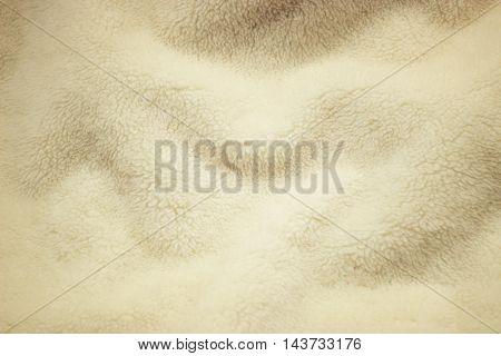 Warm vintage wool background/texture - background concept