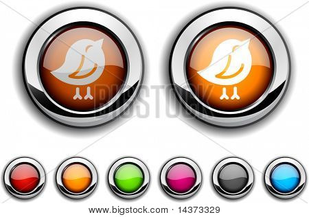Bird realistic buttons. Vector illustration.