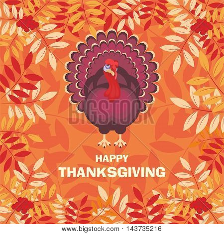 thanksgiving greeting card with the image of a big beautiful Turkey on background of autumn ashberry  leaves