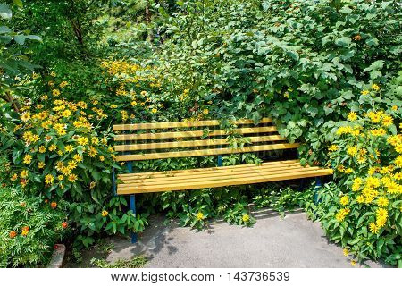 picture Yellow wooden bench in the park in the green and yellow garden flowers