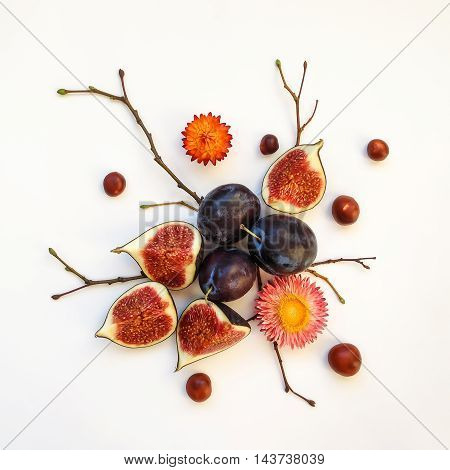 Bright autumn composition of plums figs chestnuts dry flowers and tree branches on white background. Flat lay top view