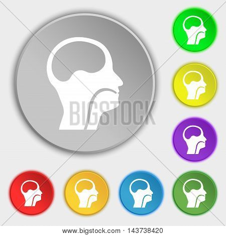 Larynx, Medical Doctors Otolaryngology Icon Sign. Symbol On Eight Flat Buttons. Vector