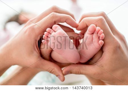 newborn baby feet on mom and dad hands shape like a lovely heart. happy family concept