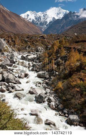 View of Langtang Valley with Langshisa Peak Langtang National Park Rasuwa District Bagmati Nepal.