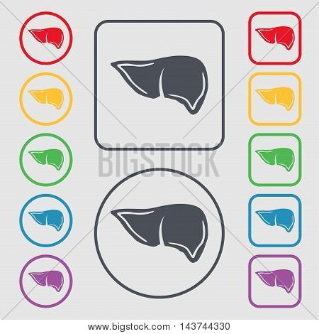 Liver Icon Sign. Symbol On The Round And Square Buttons With Frame. Vector