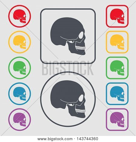 Skull Icon Sign. Symbol On The Round And Square Buttons With Frame. Vector