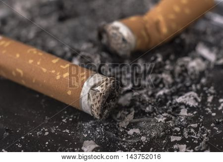 Two put out cigarette butts in ashtray