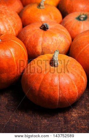 Autumn pumpkins on wooden board. Assortment of Pumpkin Stalks