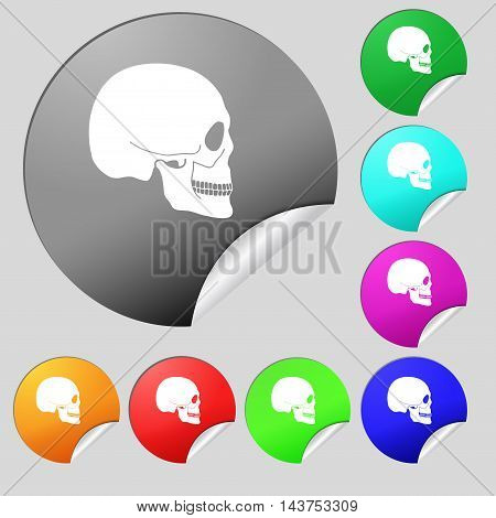 Skull Icon Sign. Set Of Eight Multi Colored Round Buttons, Stickers. Vector