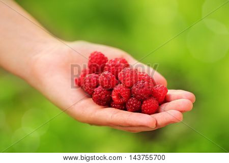 Woman standing quality and fresh-picked raspberries in hand.