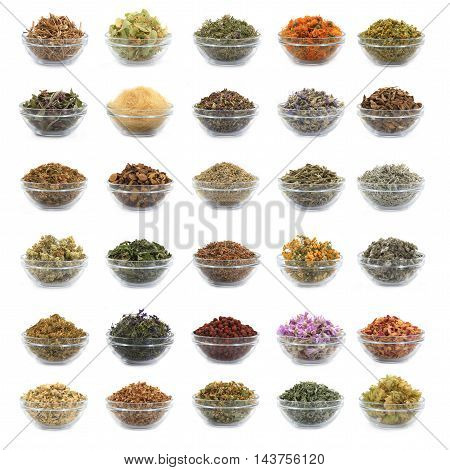 collage from the medicinal herbs using in medicine
