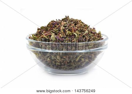 Common Sage (Salvia officinalis) in glasswares on a white background