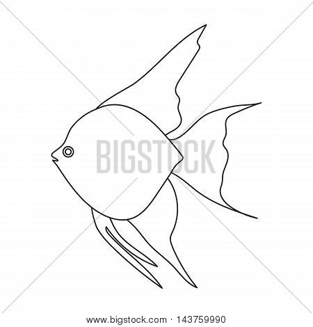 Angelfish common fish icon line. Singe aquarium fish icon from the sea, ocean life collection.