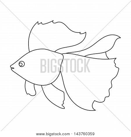 Gold fish icon line. Singe aquarium fish icon from the sea, ocean life collection.