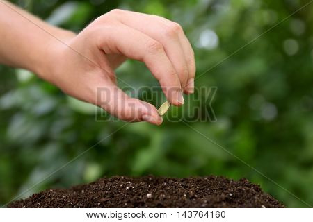 Woman hand with seed in garden