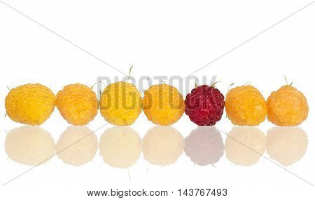 Ripe yellow raspberries isolated on white background