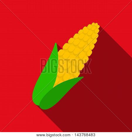 Corn icon flat. Singe vegetables icon from the eco food flat.